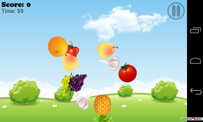 Fruitsmatch
