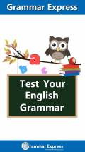 Test Your English Grammar Lite mobile app for free download