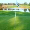 Fling It Golf