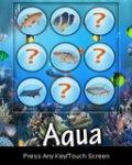 Aqua Live mobile app for free download