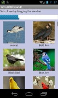 Bird Sounds mobile app for free download