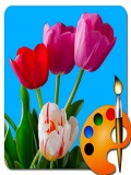 Draw Flowers Nokia Asha501 mobile app for free download
