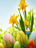 Easter SMS 240X400 mobile app for free download