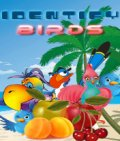 Identify Birds (176x208) mobile app for free download