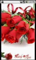 Lovely Roses mobile app for free download
