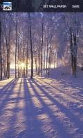 Winter Wallpaper mobile app for free download