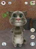 talking Tom Cats Free mobile app for free download
