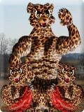 Bang Me Cheetah mobile app for free download