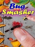 Bug Smasher mobile app for free download