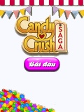 Candy crush: Saga mobile app for free download