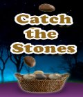 Catch the stone (176x208) mobile app for free download