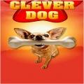 CleverDog mobile app for free download