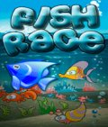 Fish Race 176x208