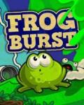 Frog Burst 176x220 mobile app for free download