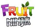 Fruit ninja pro mobile app for free download