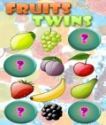 FruitsTwins mobile app for free download