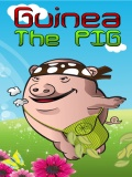 Guinea the pig (240x320) mobile app for free download