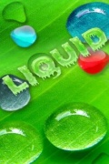 Liquid mobile app for free download