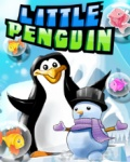 Little Penguin   Free Game mobile app for free download