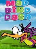 Mad Bird Dash mobile app for free download