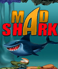 Mad Shark    Free (176x208) mobile app for free download