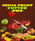 Ninja Fruit Cutter Pro mobile app for free download