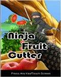 Ninja Fruit Cutter mobile app for free download