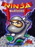 Ninja Warriors 176*208 mobile app for free download
