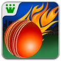Power Cricket T20 mobile app for free download