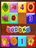 Sudoku 240x320 v1 mobile app for free download