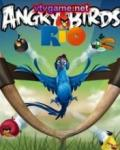 Game Angry Birds Rio mobile app for free download