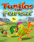 Turtles In Forest FREE mobile app for free download