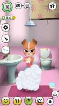 ! My Talking Lady Dog   Virtual Pet mobile app for free download
