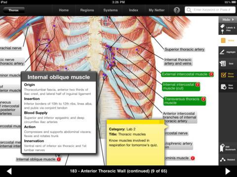 Netters Anatomy Atlas 1.1.36