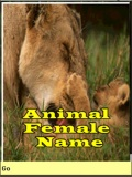AnimalFemaleName mobile app for free download
