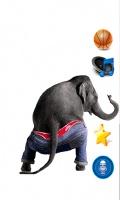 Dancing Talking Elephant mobile app for free download