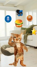 Real Talking Cat mobile app for free download
