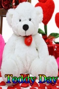 Teddy Day mobile app for free download