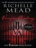 The Meeting Vampire Academy 1.1