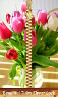 Beautiful Tulips Zipper Lock mobile app for free download