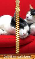 Cats Zipper Lock Screen mobile app for free download
