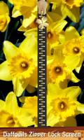 Daffodils Zipper Lock Screen mobile app for free download