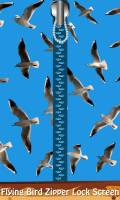 Flying Bird Zipper Lock Screen mobile app for free download