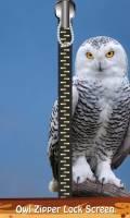 Owl Zipper Lock Screen mobile app for free download