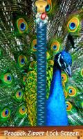 Peacock Zipper Lock Screen mobile app for free download