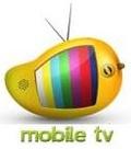 VIRK TV mobile app for free download