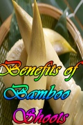 Benefits of Bamboo Shoots mobile app for free download