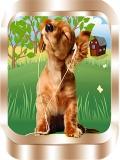 Talking Dog Sound mobile app for free download